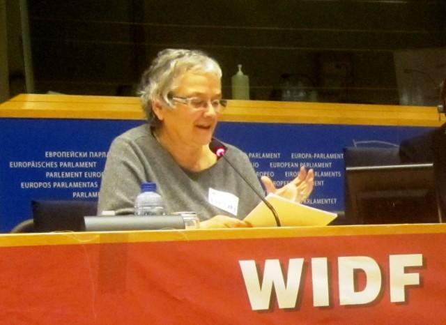 Bruxelas acolheu seminário sobre cuidados primários de saúde para as mulheres